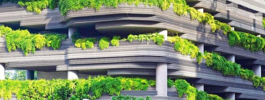 el verde en la arquitectura